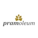 Profilbild von pramoleum
