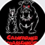 Profilbild von Die Gainfarner Strassenkoeter