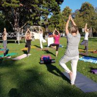 Yoga im Schloßpark3
